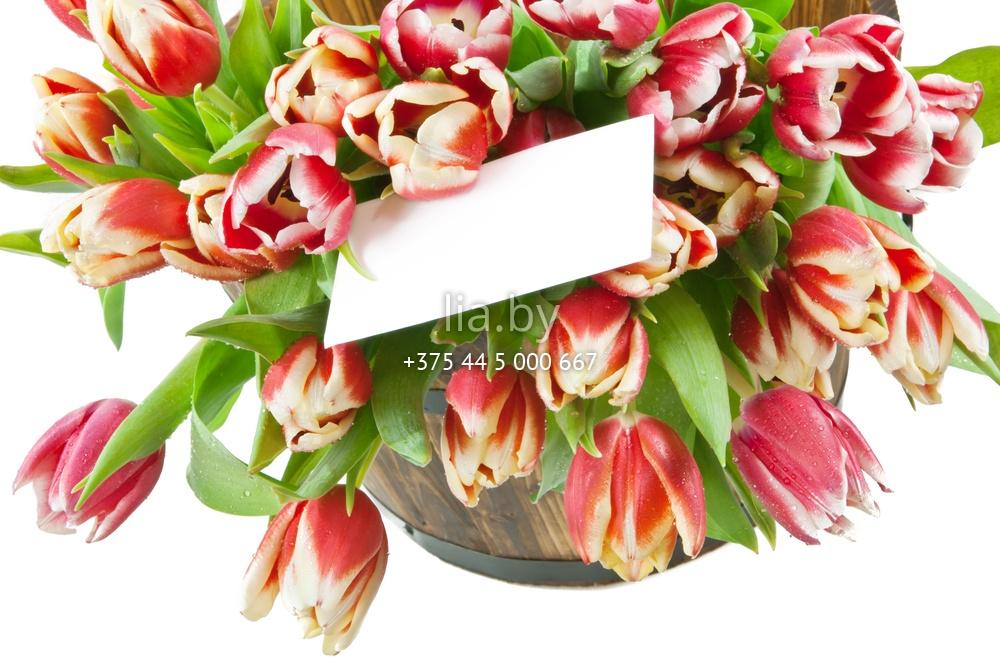 Цветы с надписью заказать доставка цветов в петрозаводске на дом